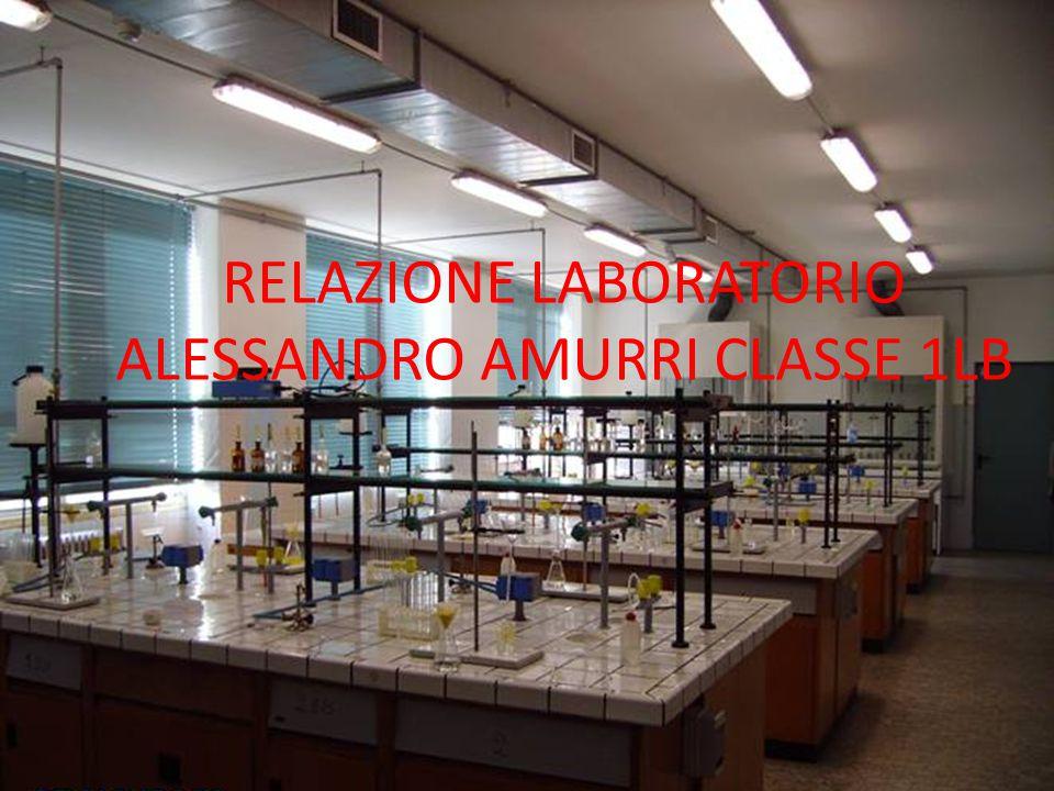 RELAZIONE LABORATORIO ALESSANDRO AMURRI CLASSE 1LB