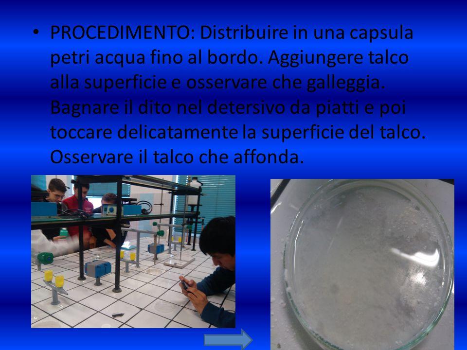 PROCEDIMENTO: Distribuire in una capsula petri acqua fino al bordo