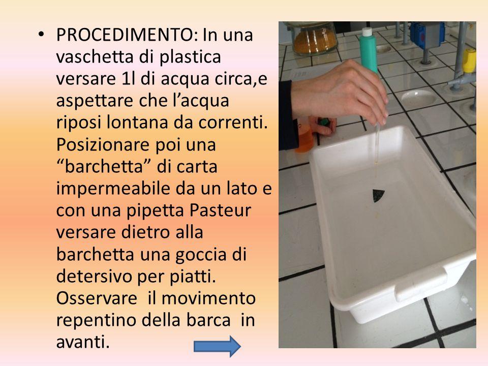 PROCEDIMENTO: In una vaschetta di plastica versare 1l di acqua circa,e aspettare che l'acqua riposi lontana da correnti.