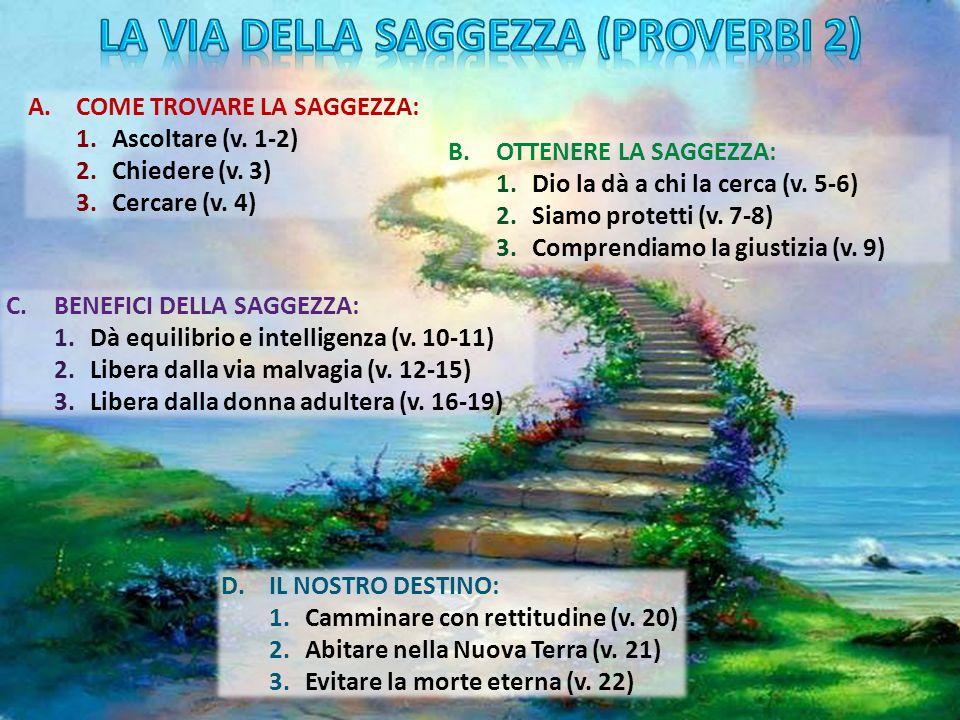LA VIA DELLA SAGGEZZA (Proverbi 2)