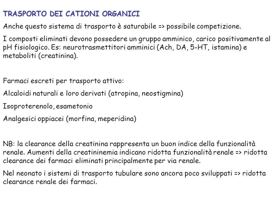TRASPORTO DEI CATIONI ORGANICI