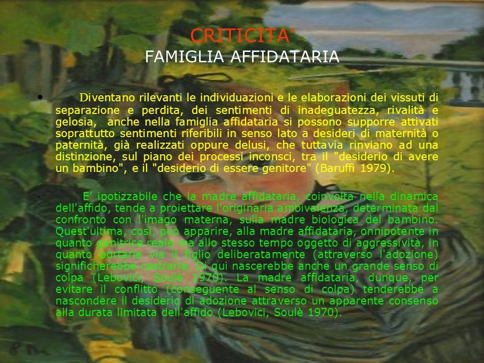 CRITICITA' FAMIGLIA AFFIDATARIA