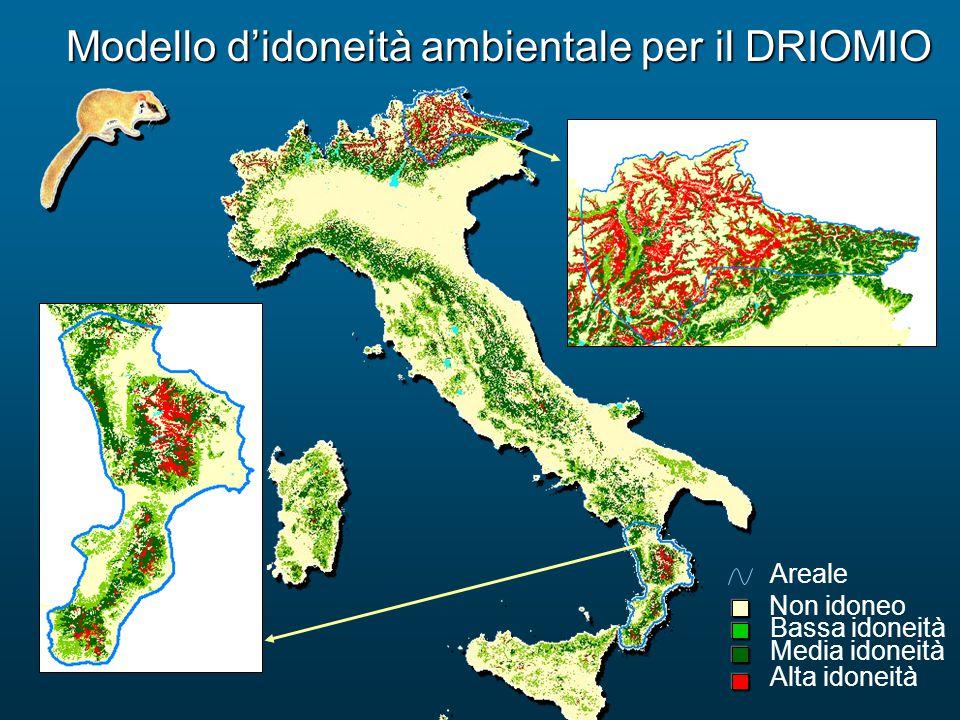 Modello d'idoneità ambientale per il DRIOMIO