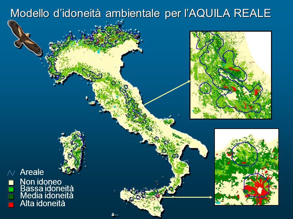 Modello d'idoneità ambientale per l'AQUILA REALE