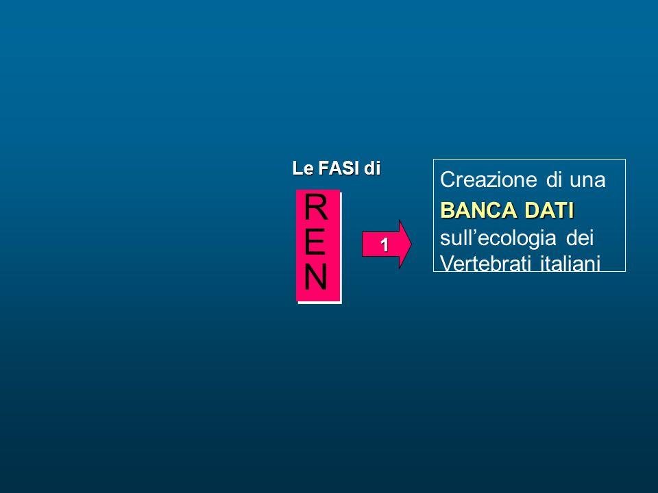 REN Creazione di una BANCA DATI sull'ecologia dei Vertebrati italiani