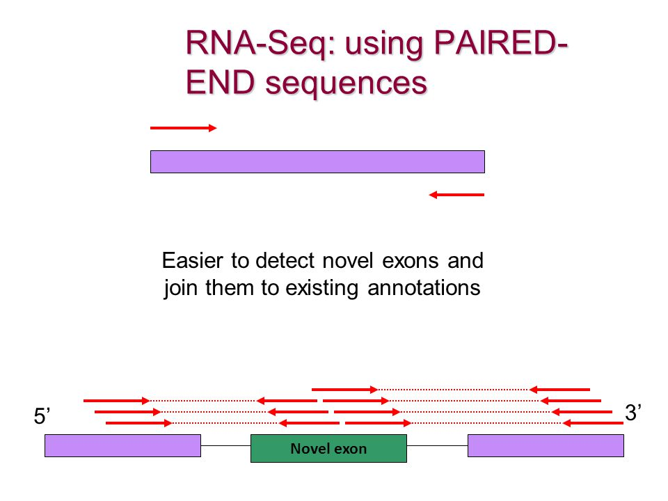 RNA-Seq: using PAIRED-END sequences