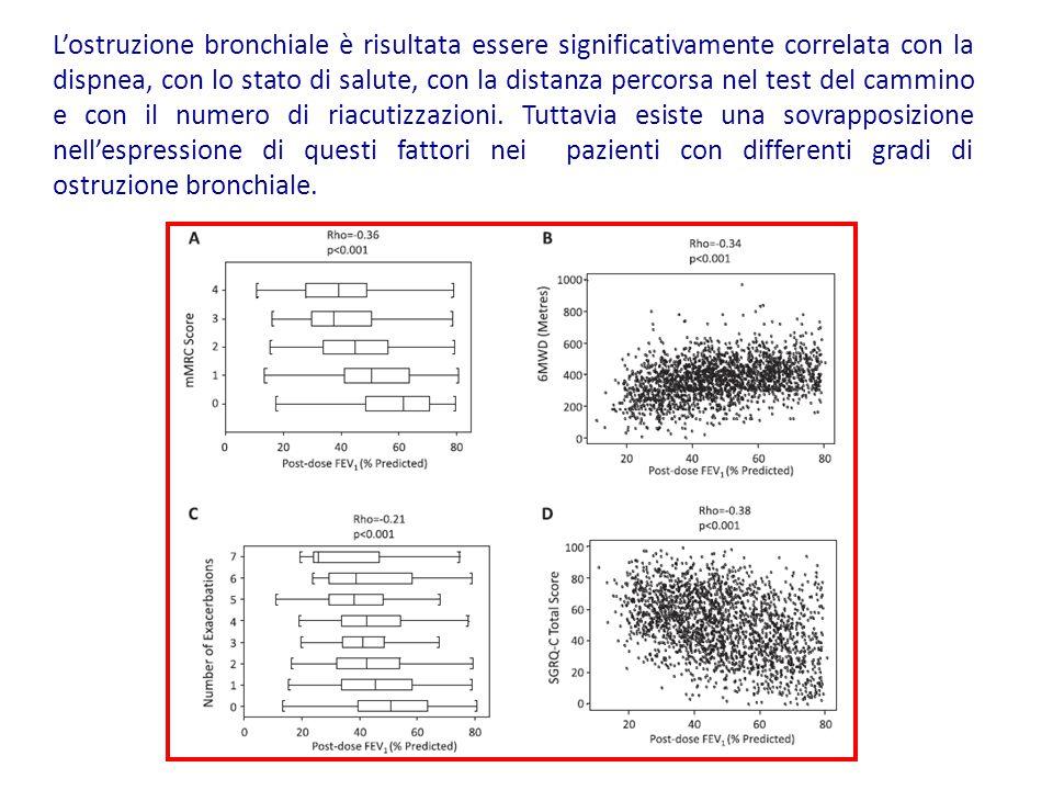 L'ostruzione bronchiale è risultata essere significativamente correlata con la dispnea, con lo stato di salute, con la distanza percorsa nel test del cammino e con il numero di riacutizzazioni.