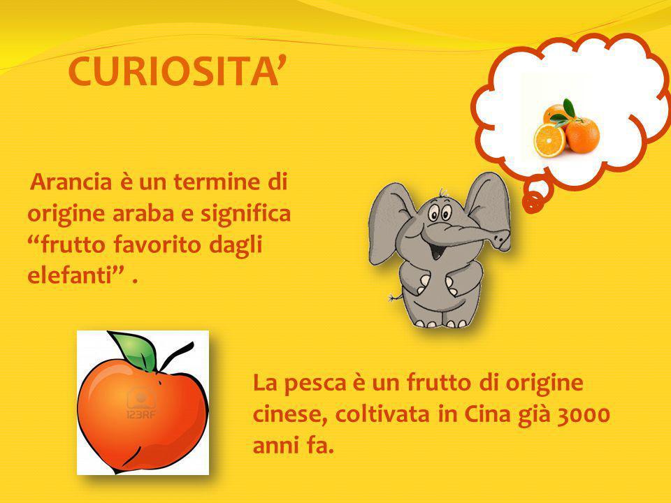 CURIOSITA' Arancia è un termine di origine araba e significa frutto favorito dagli elefanti .