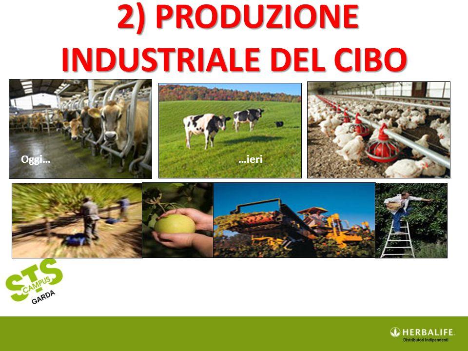 2) PRODUZIONE INDUSTRIALE DEL CIBO