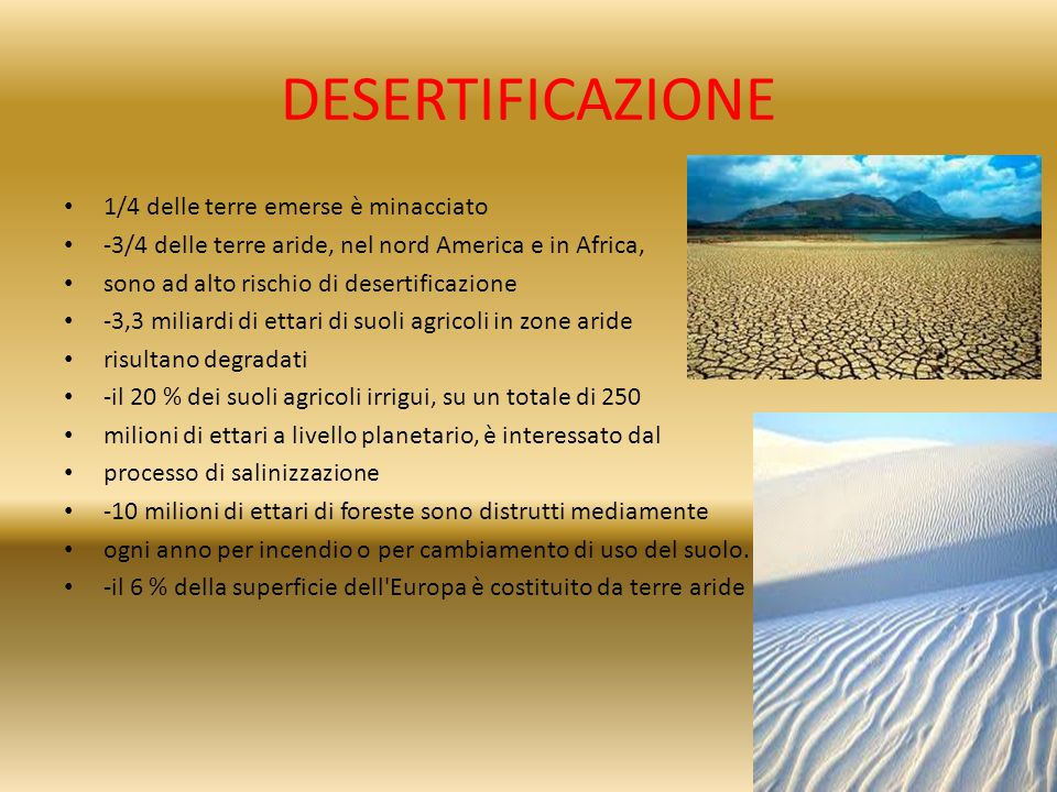 DESERTIFICAZIONE 1/4 delle terre emerse è minacciato