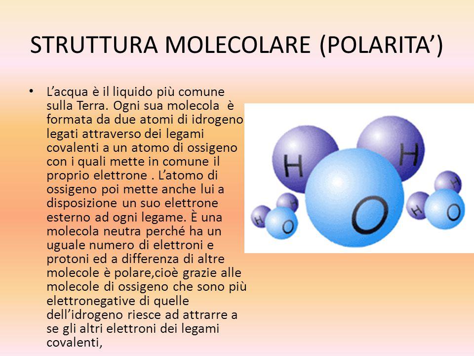 STRUTTURA MOLECOLARE (POLARITA')