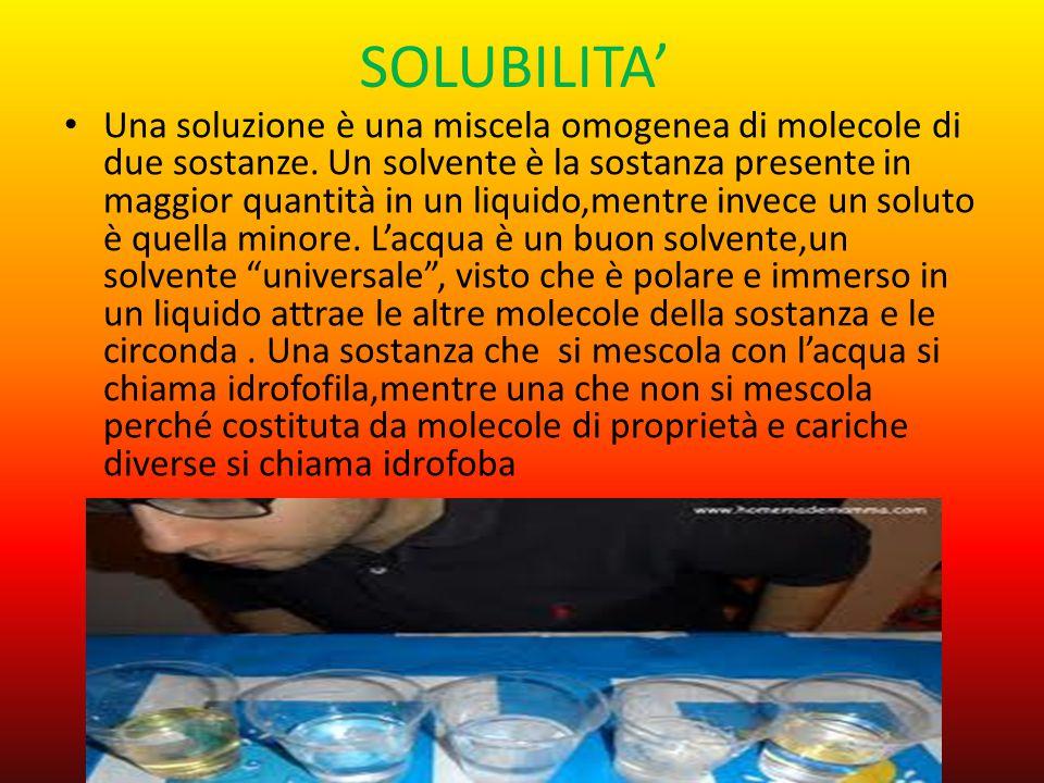 SOLUBILITA'