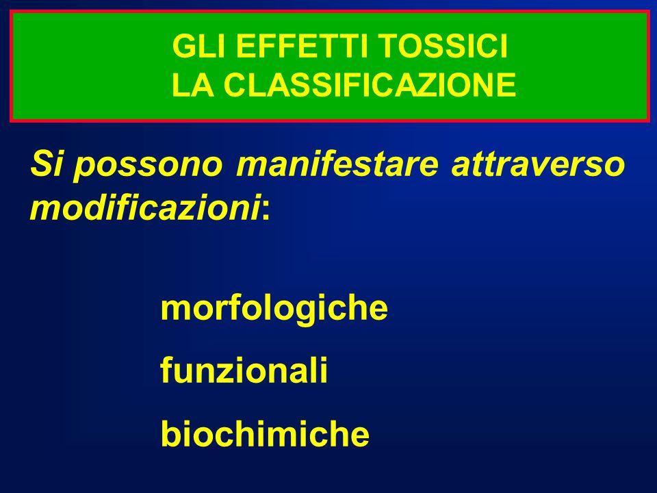 Si possono manifestare attraverso modificazioni: morfologiche