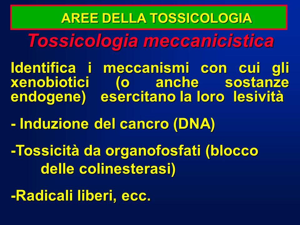 Tossicologia meccanicistica