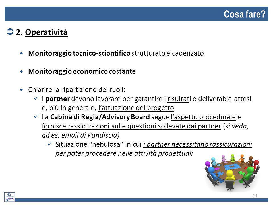 Cosa fare 2. Operatività. Monitoraggio tecnico-scientifico strutturato e cadenzato. Monitoraggio economico costante.