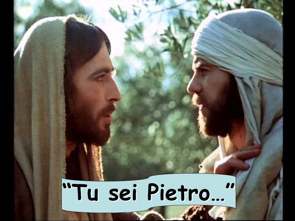 Tu sei Pietro…