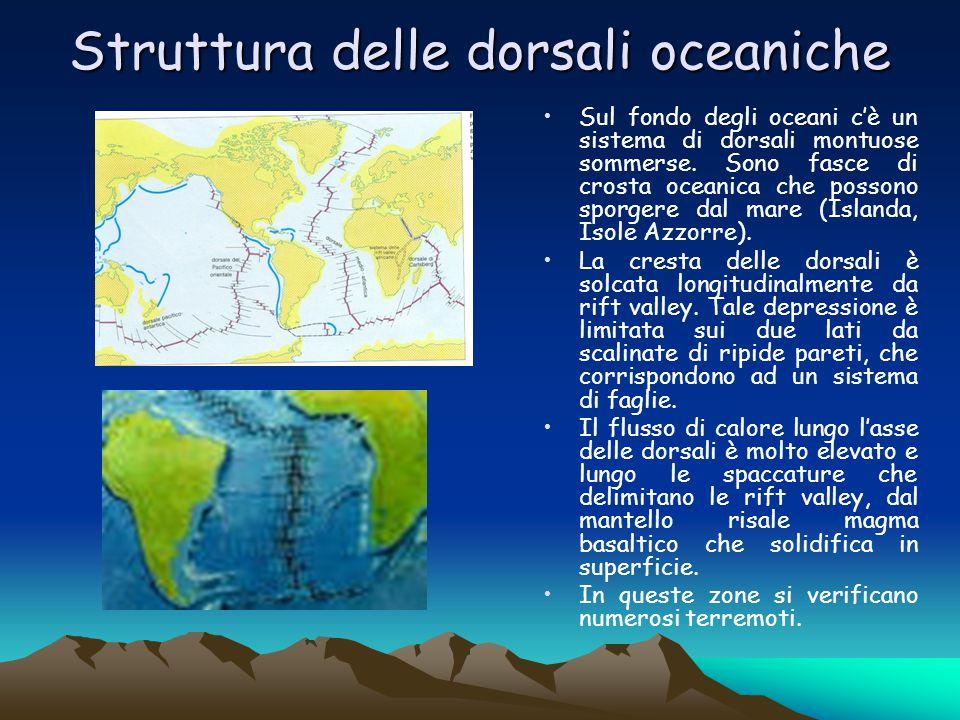 Struttura delle dorsali oceaniche