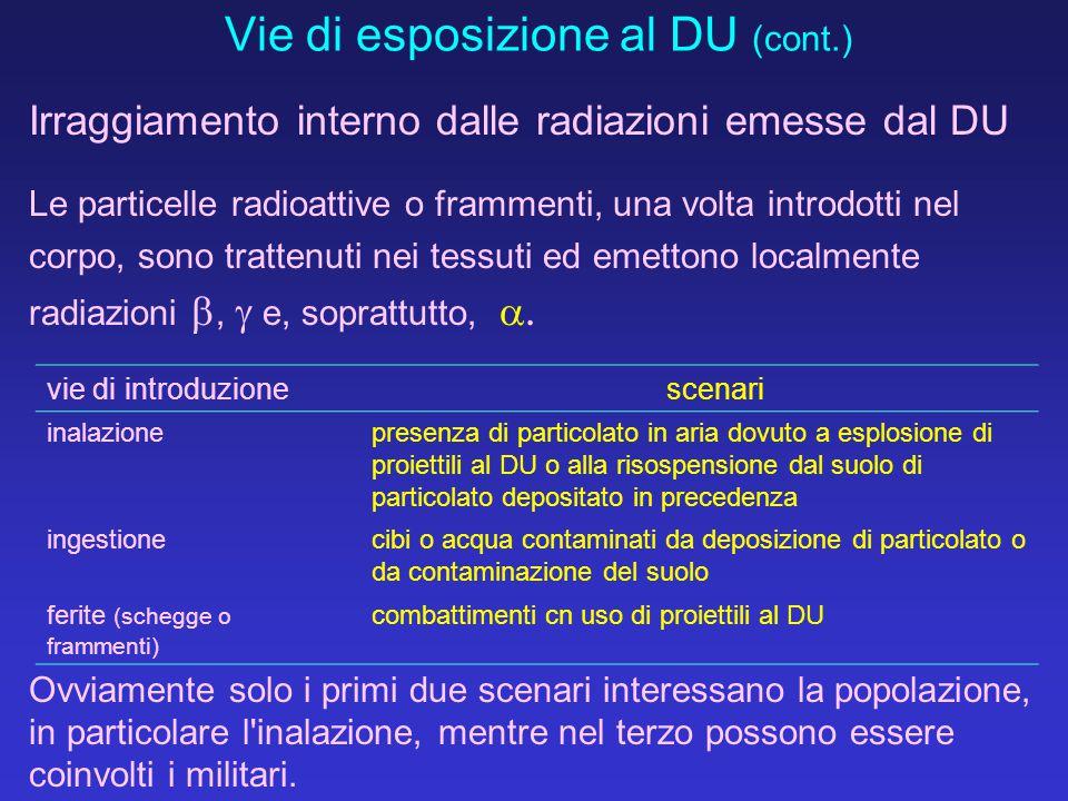 Vie di esposizione al DU (cont.)