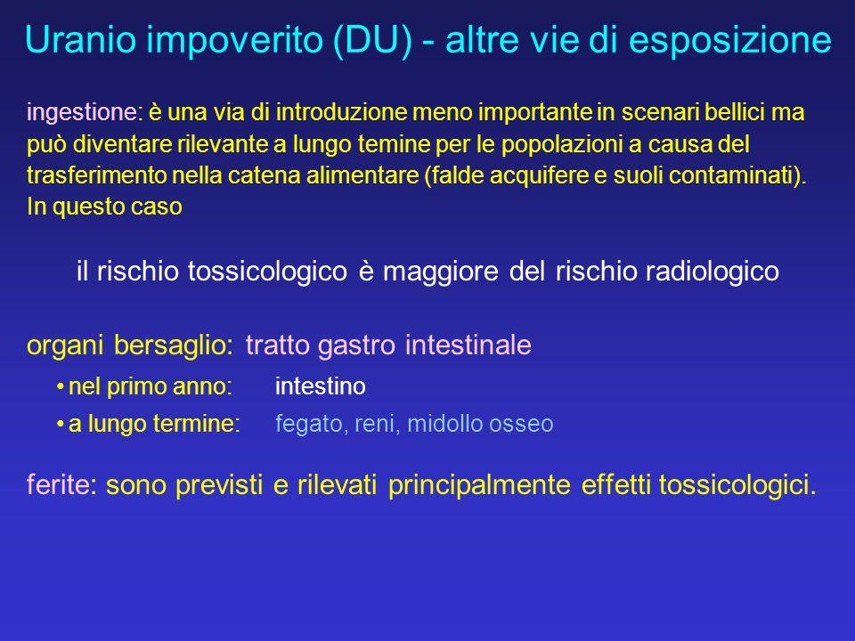 Uranio impoverito (DU) - altre vie di esposizione