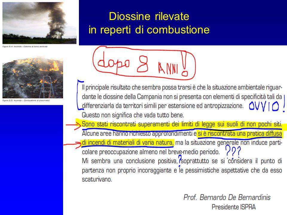 Diossine rilevate in reperti di combustione