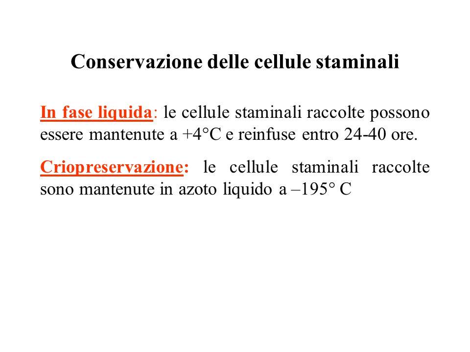 Conservazione delle cellule staminali