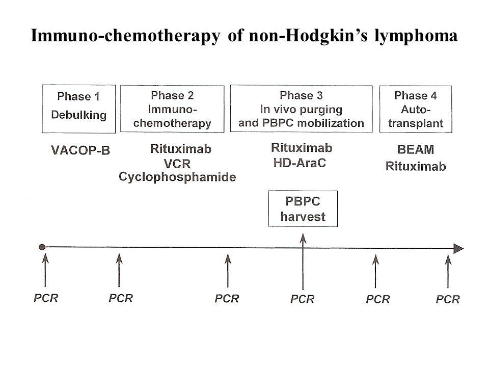 Immuno-chemotherapy of non-Hodgkin's lymphoma
