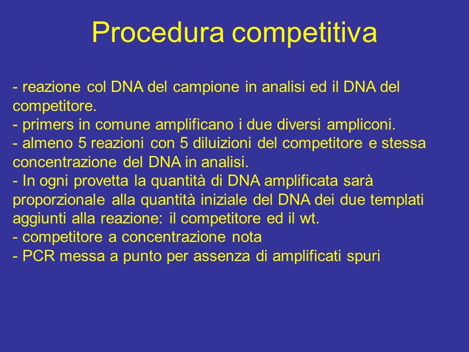 Procedura competitiva