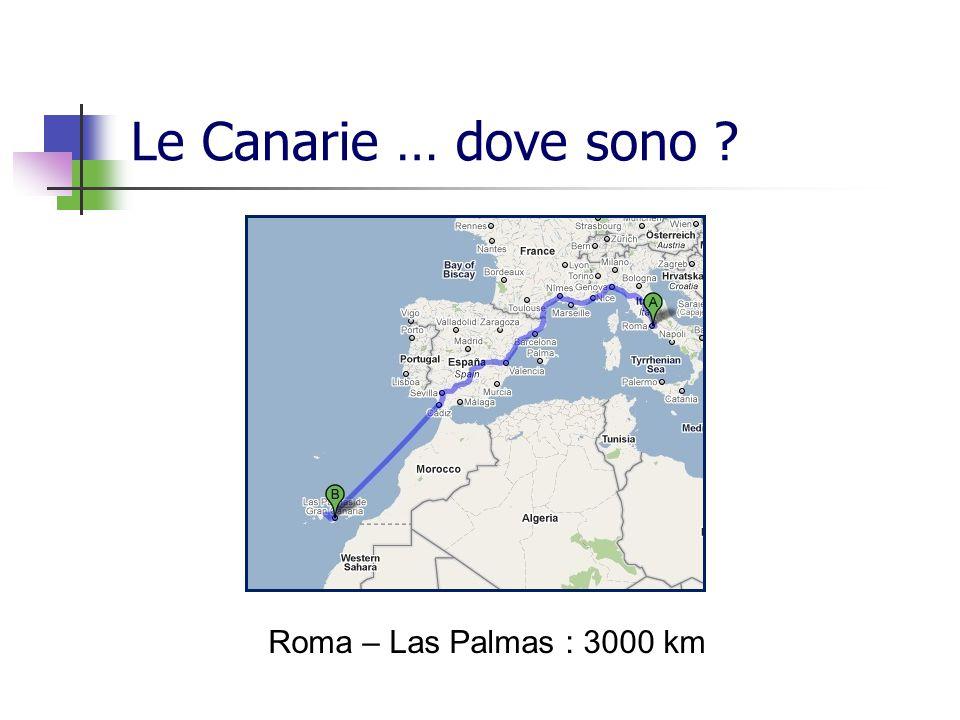 Le Canarie … dove sono Roma – Las Palmas : 3000 km