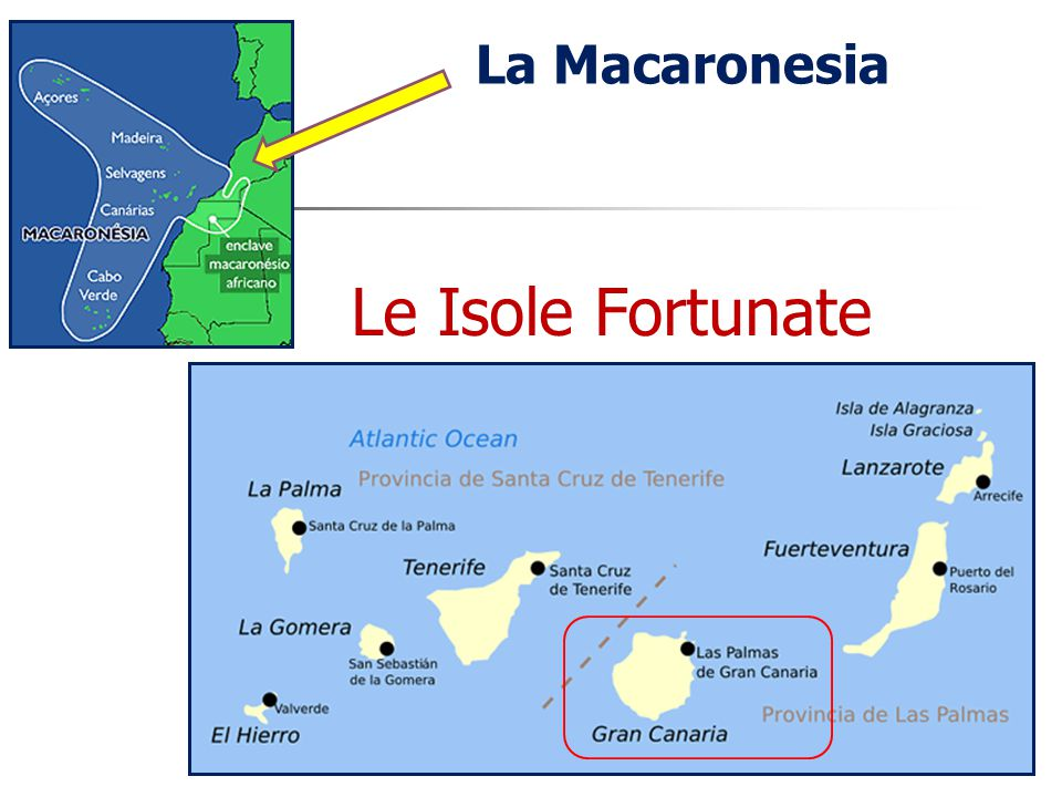 La Macaronesia Le Isole Fortunate