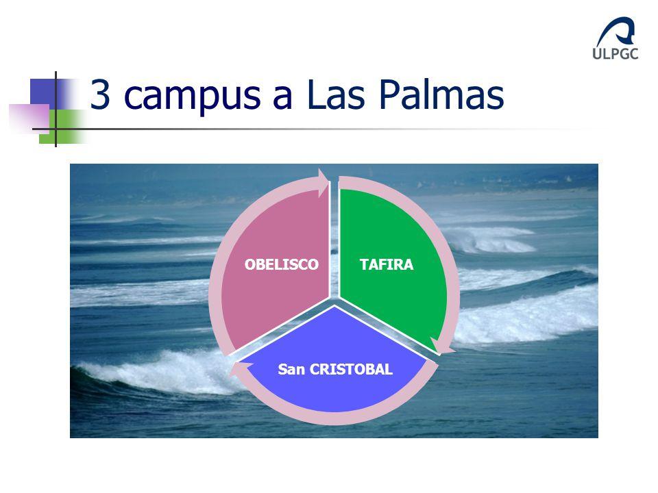 3 campus a Las Palmas TAFIRA San CRISTOBAL OBELISCO