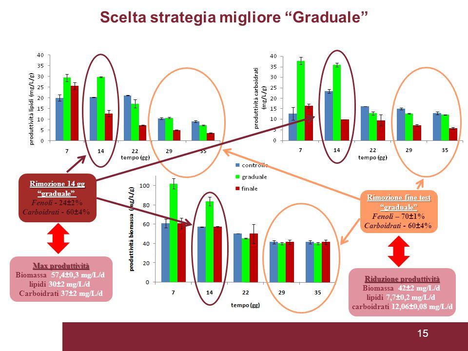 Scelta strategia migliore Graduale Riduzione produttività
