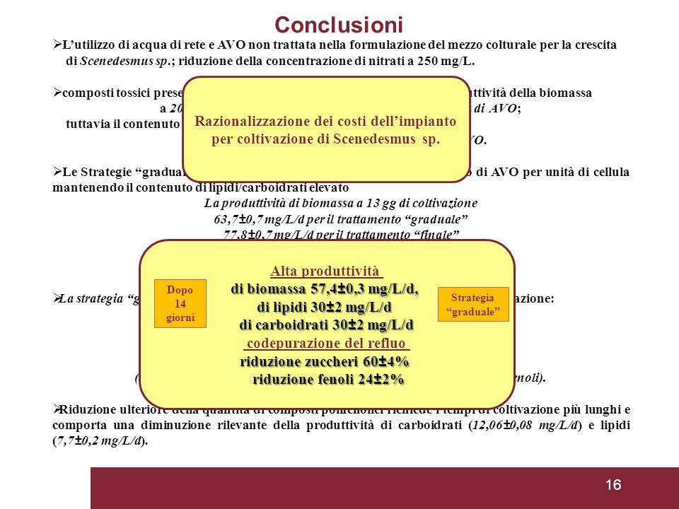 Conclusioni Razionalizzazione dei costi dell'impianto