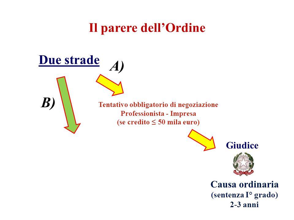 A) B) Il parere dell'Ordine Due strade Giudice Causa ordinaria