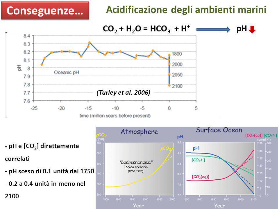 Conseguenze… Acidificazione degli ambienti marini