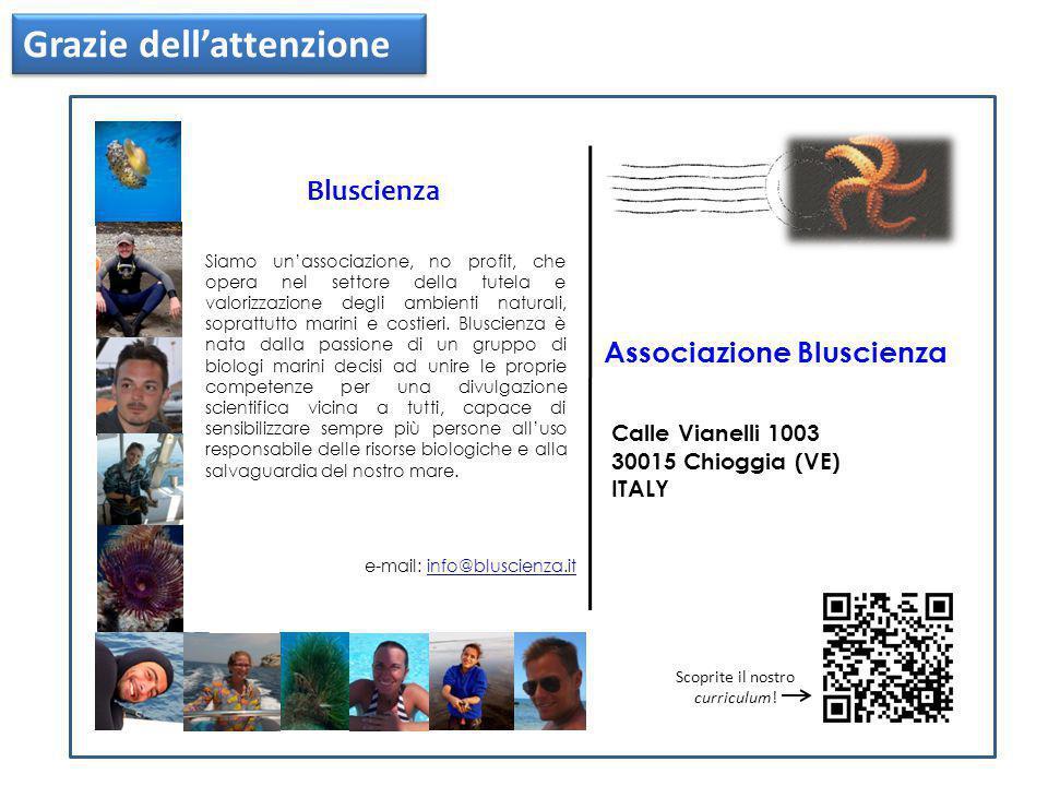 Associazione Bluscienza