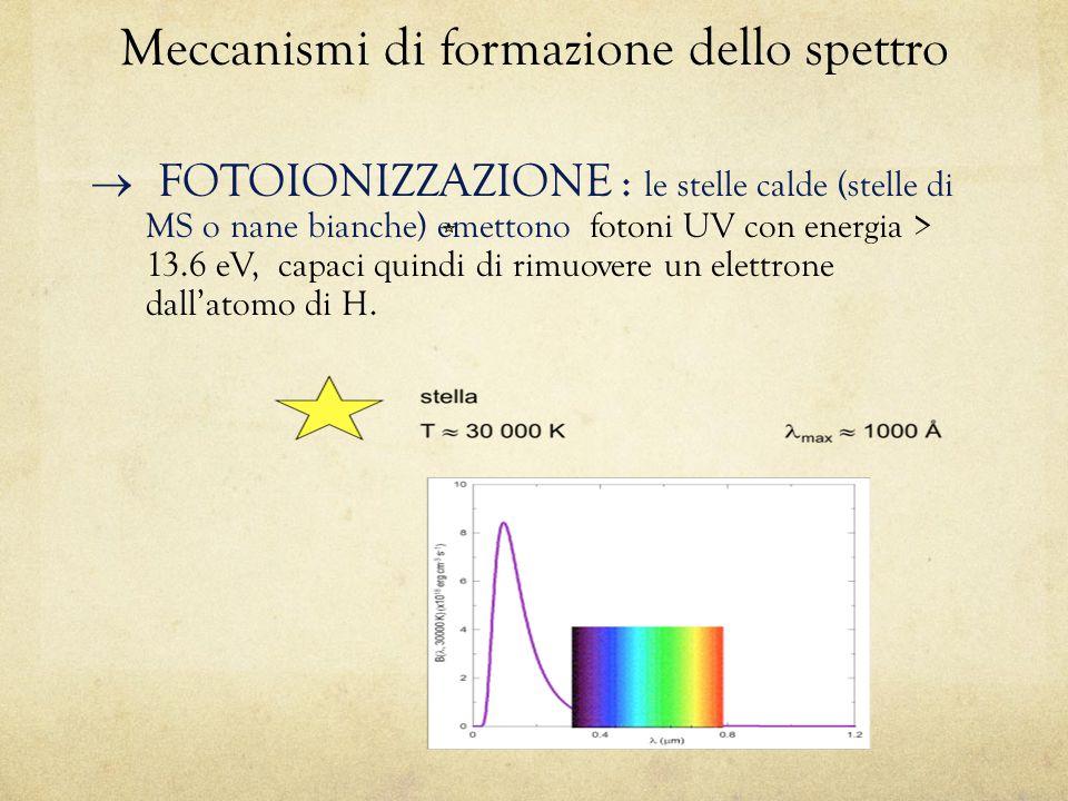 Meccanismi di formazione dello spettro
