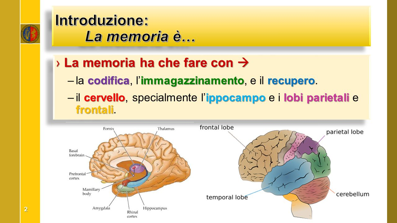 Introduzione: La memoria è…