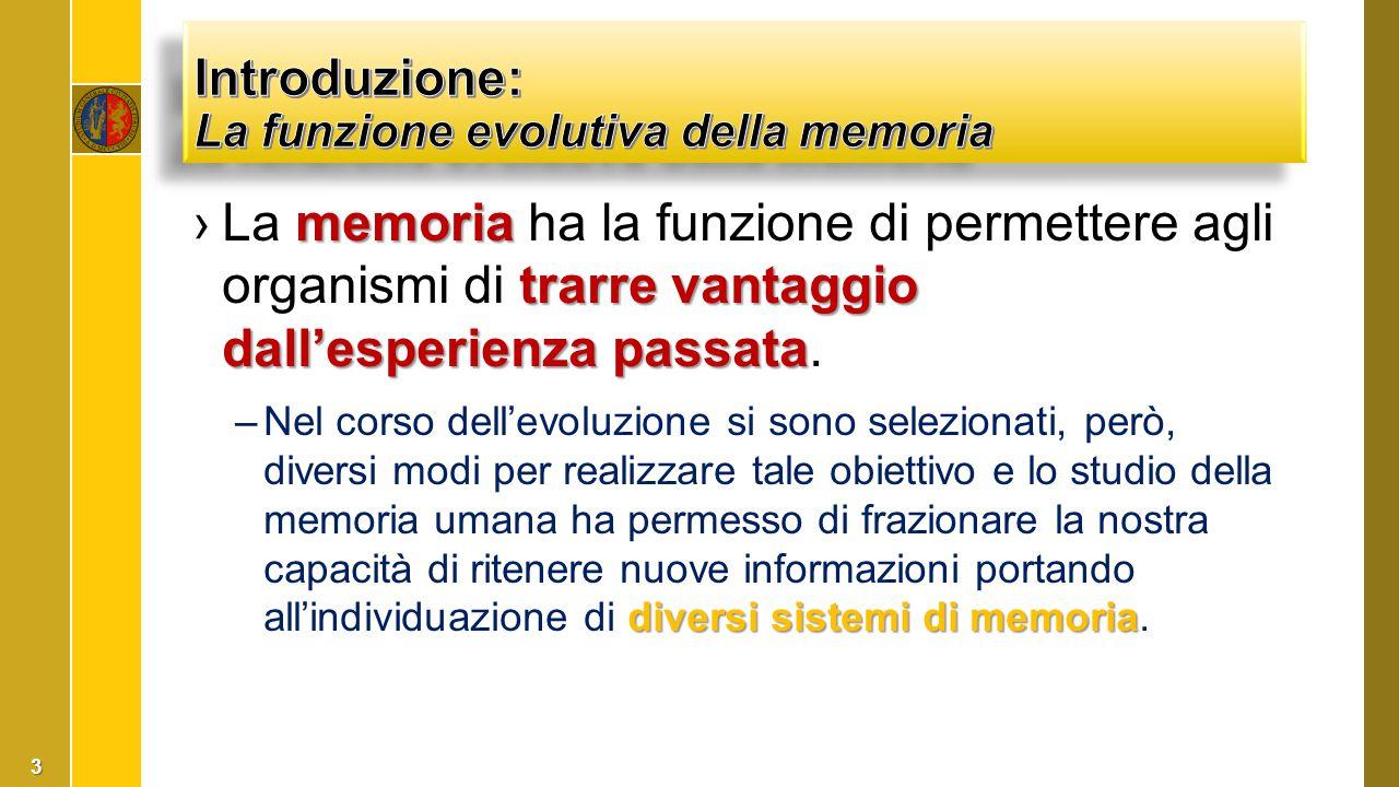Introduzione: La funzione evolutiva della memoria