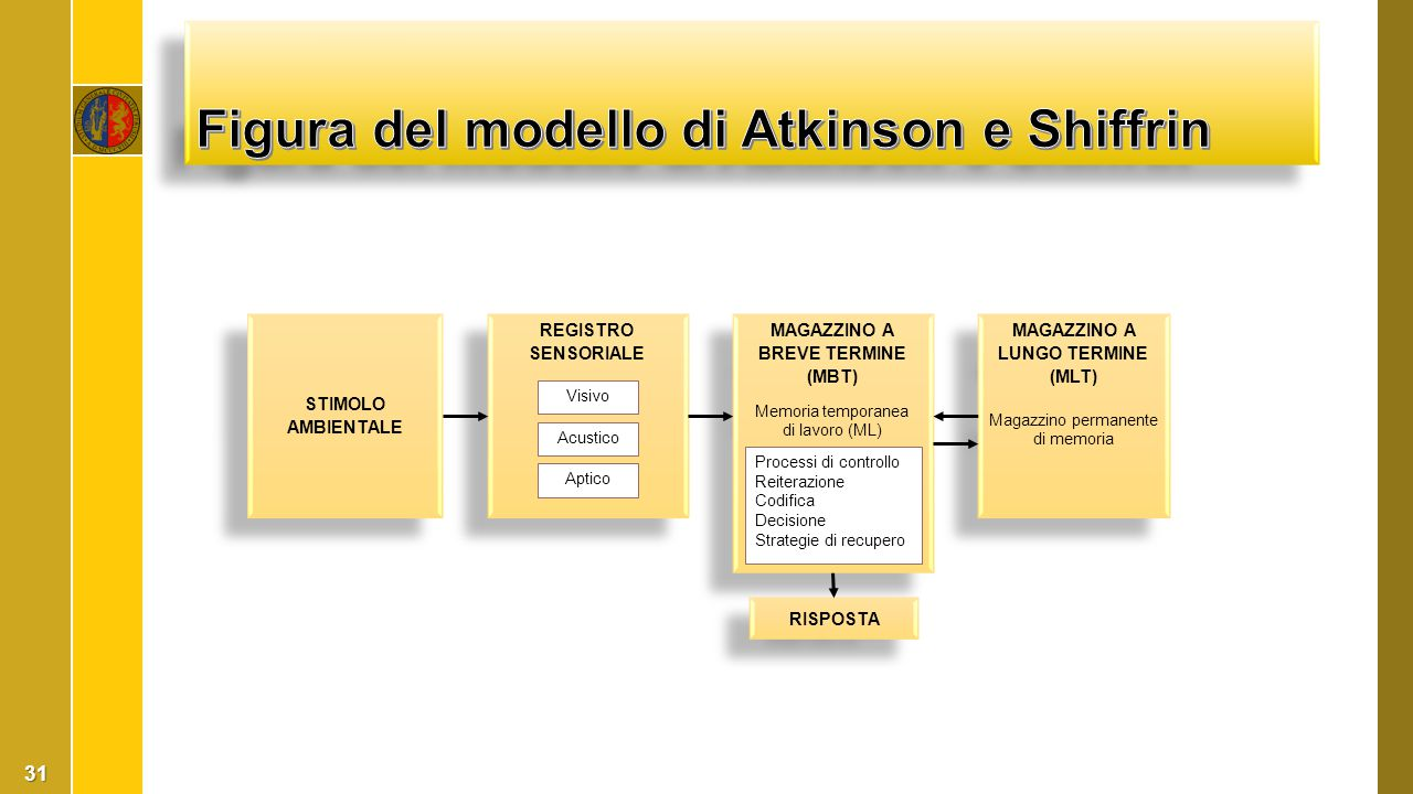 Figura del modello di Atkinson e Shiffrin