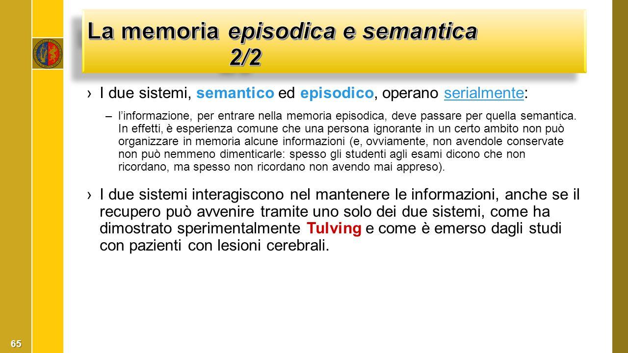 La memoria episodica e semantica 2/2