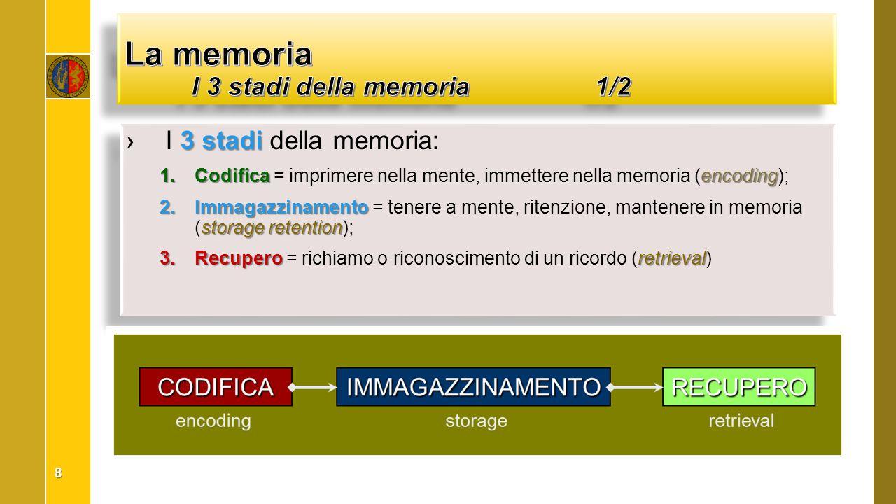 La memoria I 3 stadi della memoria 1/2