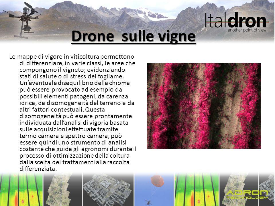 Drone sulle vigne
