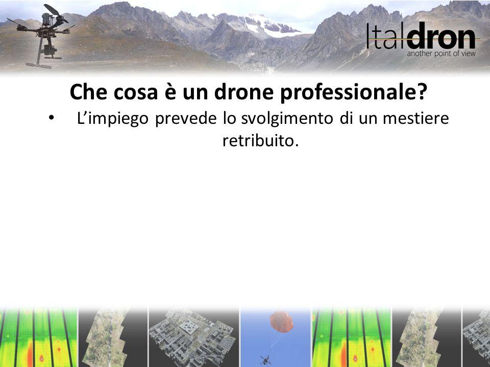 Che cosa è un drone professionale