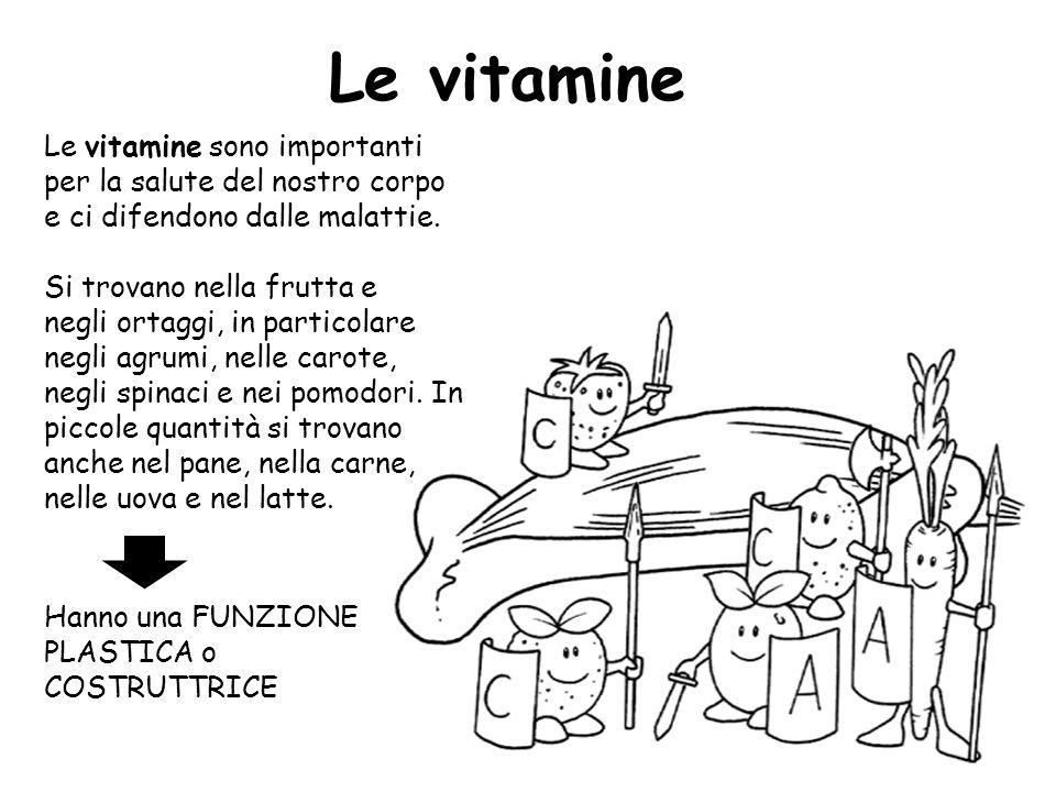 Le vitamine Le vitamine sono importanti per la salute del nostro corpo e ci difendono dalle malattie.