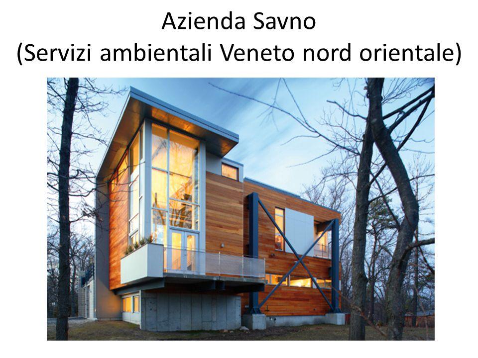 Azienda Savno (Servizi ambientali Veneto nord orientale)