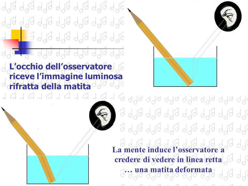L'occhio dell'osservatore riceve l'immagine luminosa rifratta della matita
