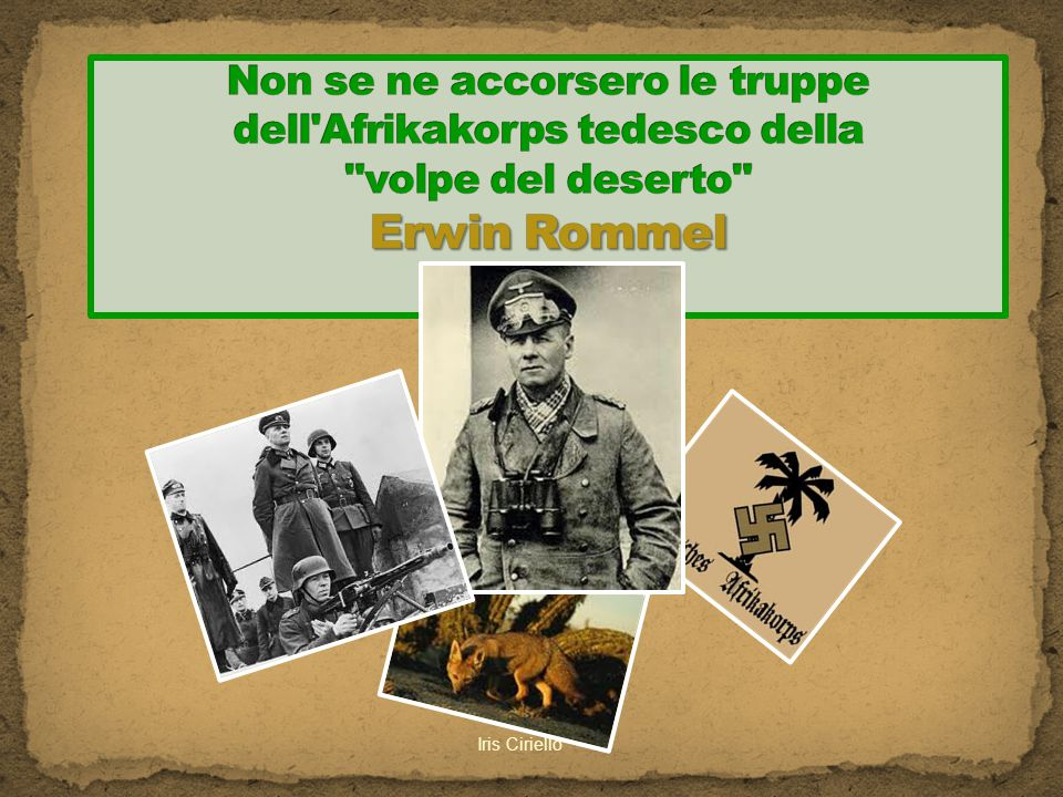 Non se ne accorsero le truppe dell Afrikakorps tedesco della volpe del deserto Erwin Rommel
