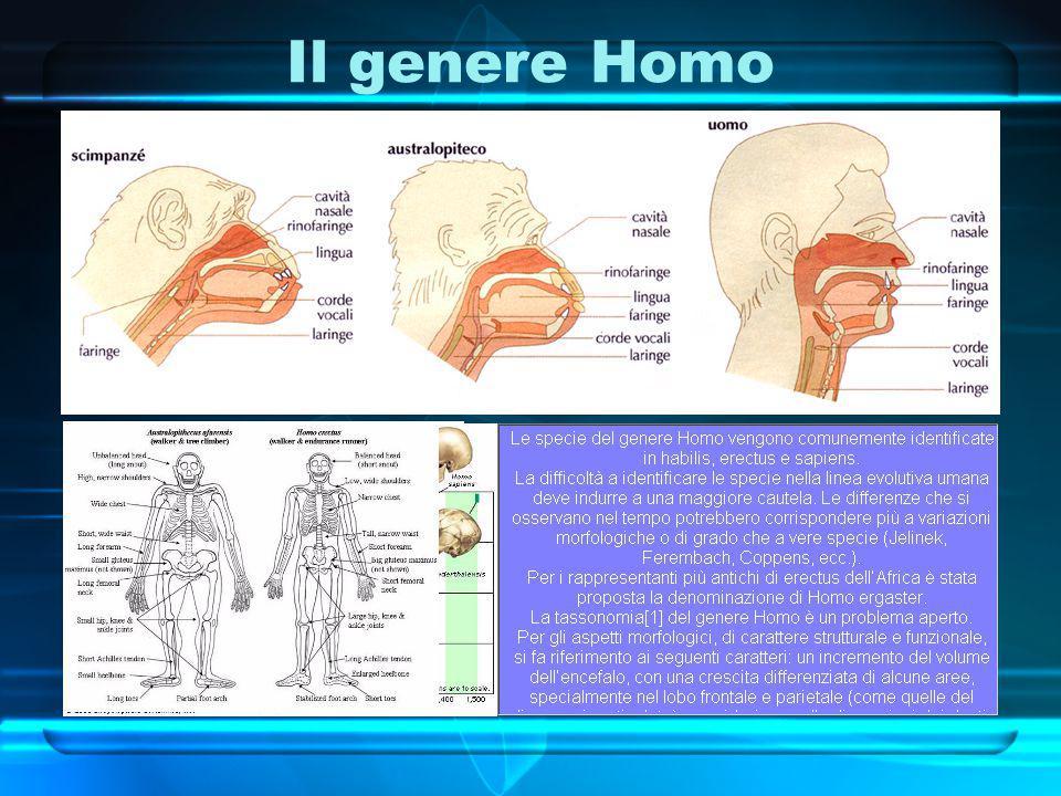 Il genere Homo