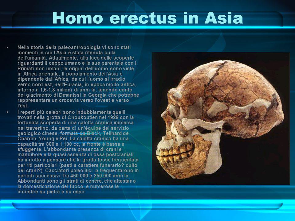 Homo erectus in Asia
