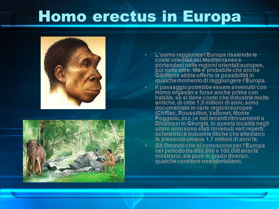 Homo erectus in Europa